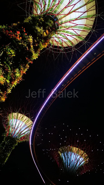 arbres lumiere singapour 2 WM